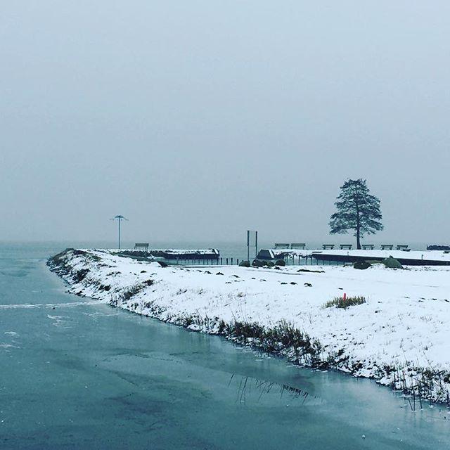 Der gefrorene Dümmer