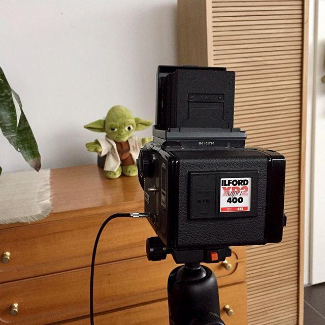 Meister Yoda und eine alte Zenza Bronica ETR-S